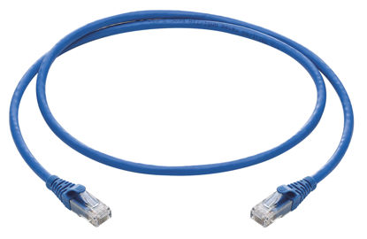 Picture of Cat 6 cable 1mtr